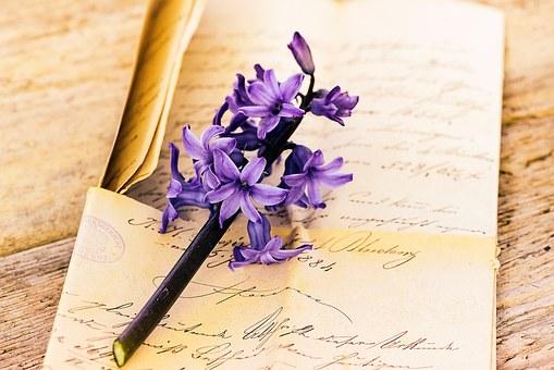 紫の花と手紙